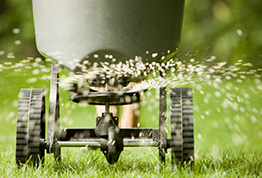 Prepping Your Lawn for Fall
